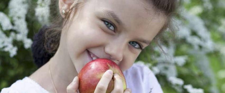 программа похудения детей